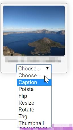 Kuvan eri toiminnot. Toimintoihiin kuuluu Caption, Poista, Flip, Resize, Rotate, Tag ja Thumbnail.